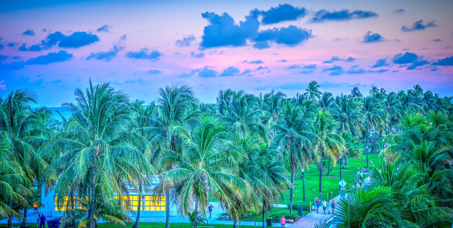 Florida keys drive'n dive